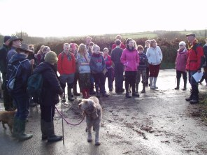 New Year's Walk 2014